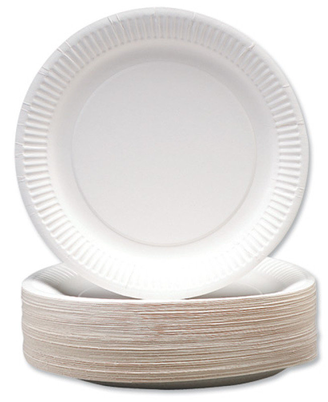 "CPD 9"" White Paper Plate - 100 Pack"